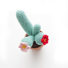 Mini Cactus Free Crochet Pattern